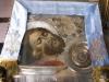 بطريركية الروم الارثوذكسية تحيي ذكرى قطع راس يوحنا المعمدان