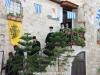 06البطريركية ألاورشليمية تحتفل بعيد القديس العظيم في الشهداء خرالامبوس
