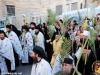 31مسيرة سعف النخيل من بيت فاجي 2017