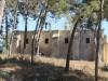 Ma`lul (2)[809]2. الكنيسة بعد عمليات التنظيف وخلال فترة إعادة الترميم [في ٢٠١١].