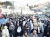 08مسيرة سعف النخيل من دير بيت فاجي