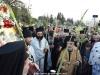 17مسيرة سعف النخيل من دير بيت فاجي